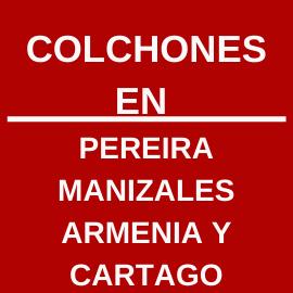 Pereira Manizales Y Cartago